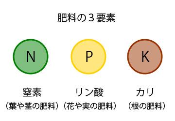 肥料の3要素と元肥・追肥の基礎...